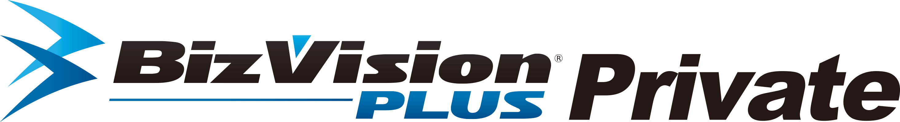BizVision PLUS Private